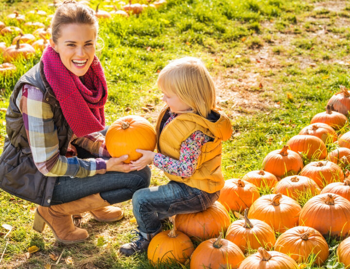 Do You Need To Disinfect Your Pumpkin After Bringing It Home? Experts Say Absolutely